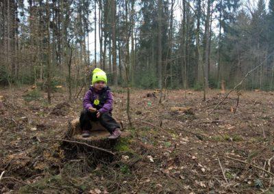 Březen - královna lesa
