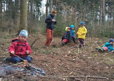 Březen - rychlotopinkovač lesní